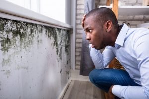 Shocked Man Looking At Mold On Wall